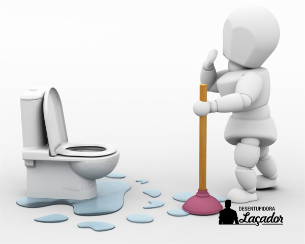 Você sabe o que usar para desentupir vaso sanitário
