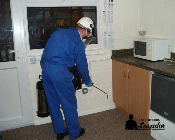 Controle de pragas em prédios deve ser feito semestralmente